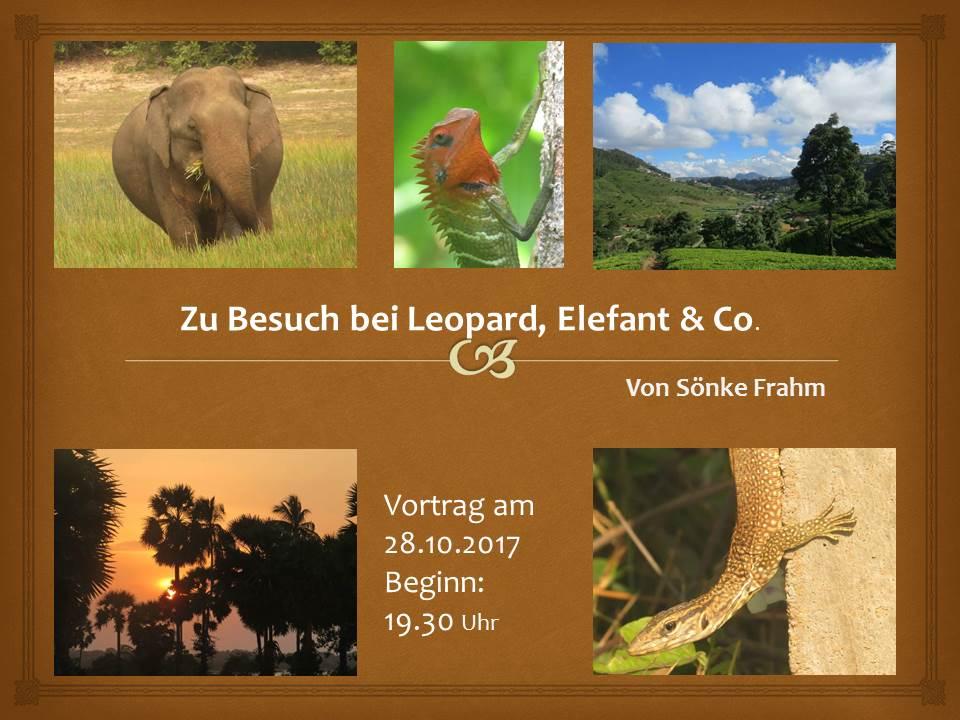 Vortrag - Zu Besuch bei Leopard, Elefant & Co