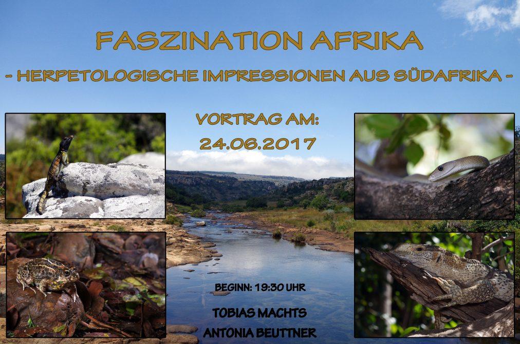 Vortrag - Herpetologische Impressionen