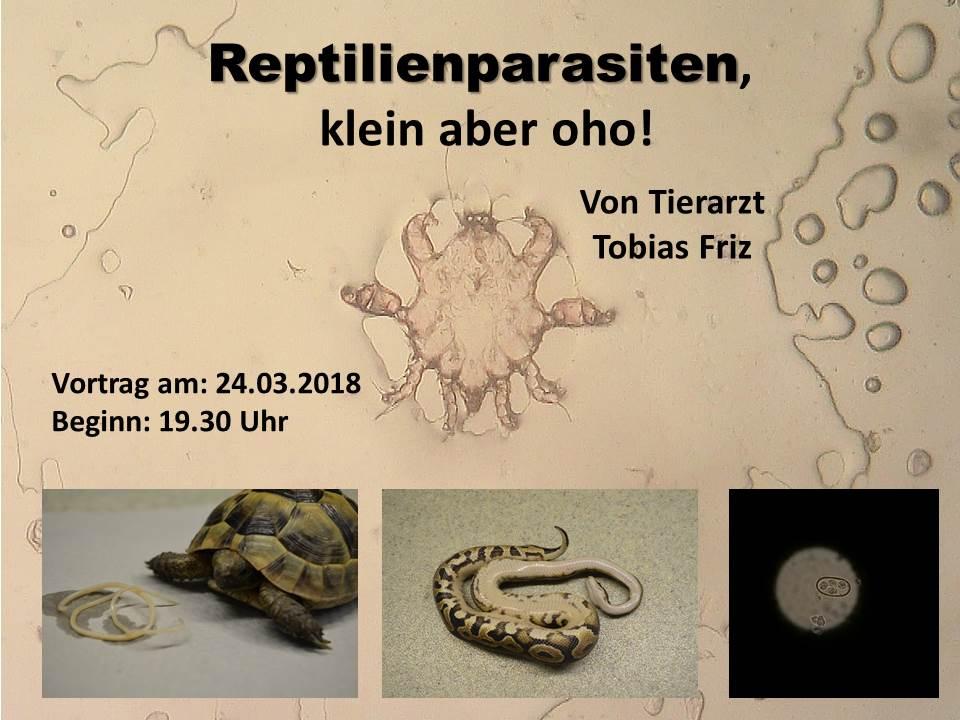 Plakat März 2018